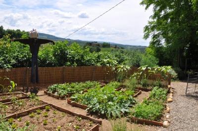 garden_httpwww.flickr.compeoplesalvadonica