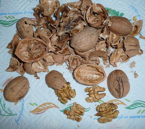 Nucile: un necesar de vitamine, proteine si minerale