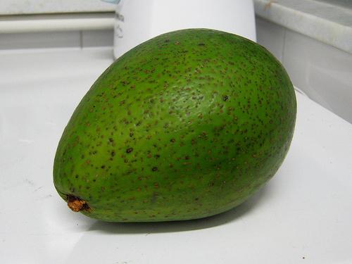 avocado_fruct_width