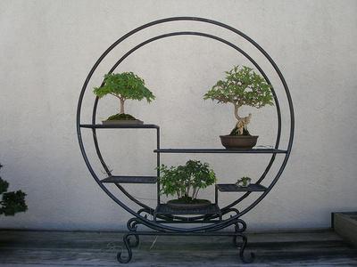 Aranjament cu bonsai