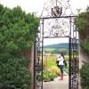 10 lectii de design invatate de la gradinile irlandeze