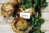 telina_de_radacina_dacia