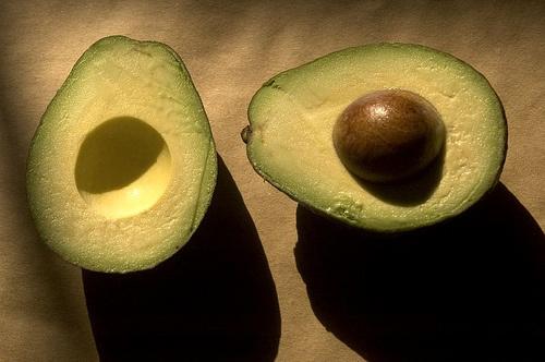 avocado_1_width