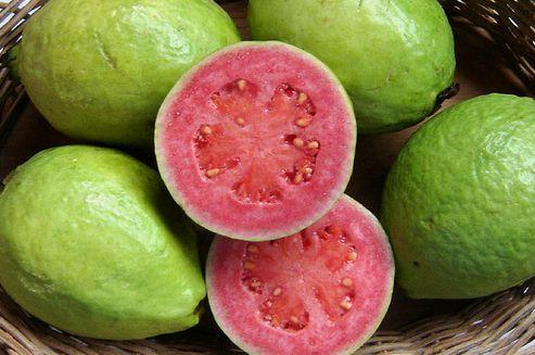 fructe exotice Psidium Guajava