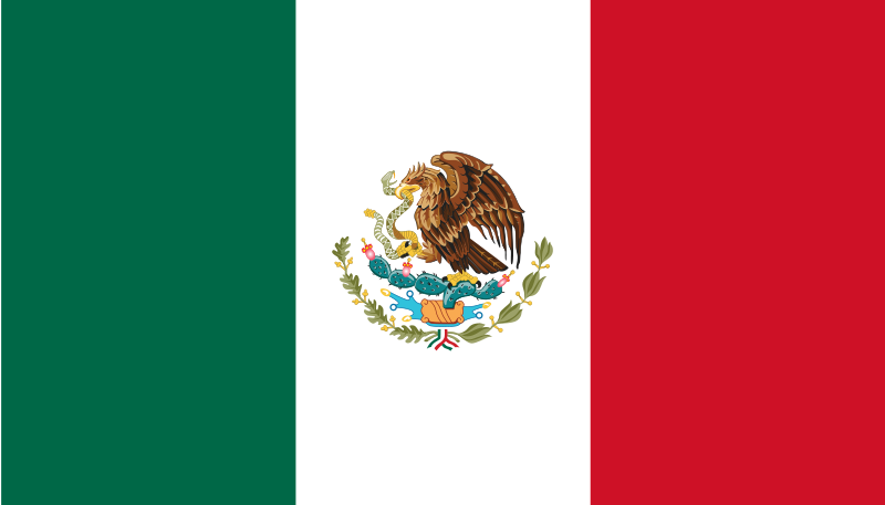 steag mexic