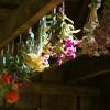 Aranjamente din flori uscate