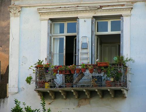 o gradina la tine in balcon