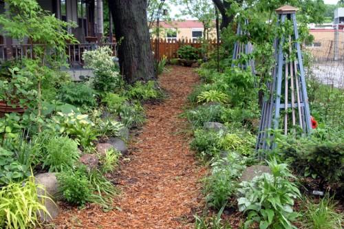 Sfaturi pentru creşterea unei grădini de legume organice